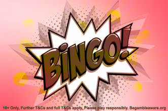 best new online bingo sites co uk